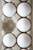 The missing egg Stock Images