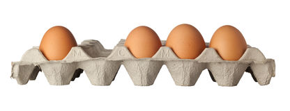 Missing egg Stock Photography