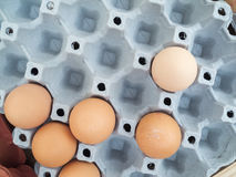 Missing eggs Royalty Free Stock Images
