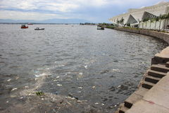 Missing five months for Olympics the Guanabara Bay waters are rotten Royalty Free Stock Image