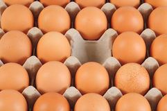 Missing One Egg. Concept. Royalty Free Stock Photos