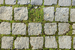 Missing part cobblestone texture. Cobblestone texture with grass growth between blocks with one part missing Stock Image