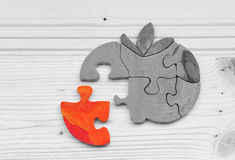 The missing puzzle piece Royalty Free Stock Photos