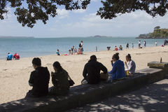 Mission Bay of Auckland, New Zealand Royalty Free Stock Images