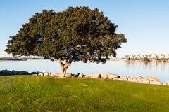 Mission Bay Park at De Anza Cove. Mission Bay Park in San Diego, California in the De Anza Cove area stock photos