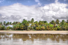 Mission Beach. In Tropical Queensland, south of Cairns, Australia stock image