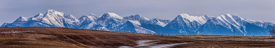 The Mission Mountains and Pastureland Stock Image