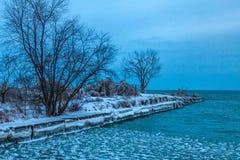 Mississauga, Kanada, Luty 14, 2019: zimy idylla zamarznięci drzewa i brzeg Jeziorny Ontario blisko Toronto, Kanada obrazy stock