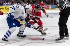 Mississauga Steelheads vs Ottawa 67 Hockeylek Royaltyfri Foto