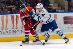 Mississauga Steelheads vs Ottawa 67 Hockeylek Arkivbild