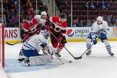 Mississauga Steelheads vs Ottawa 67 Hockeylek Arkivfoto