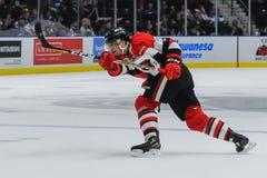 Mississauga Steelheads vs Ottawa 67 Hockeylek Arkivfoton