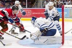 Mississauga Steelheads vs Ottawa 67 Hockeylek Royaltyfria Bilder
