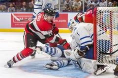 Mississauga Steelheads vs Ottawa 67 Mecz hokeja fotografia royalty free