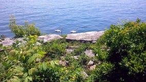 Mississauga-Ufergegend lizenzfreies stockbild