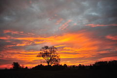 Mississippi-Delta, Clarksdale Mitgliedstaat Sunrise Stockbilder