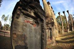 Mississippi Delta, MS Rodney, Windsor Ruins Stock Images