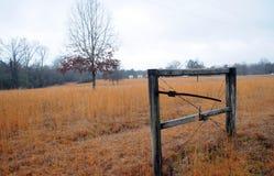 Mississippi fält Fotografering för Bildbyråer
