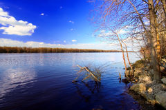 Mississippi River Andalusia Slough Stock Photos