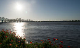 Mississippi River Bridge with shoreline poppies Stock Photo