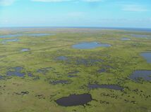 Mississippi River Delta Stock Photos