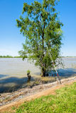 Mississippi River Royalty Free Stock Photos