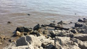 Mississippi Shore Royalty Free Stock Images