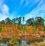 Mississippi. Swamp in fall along the Natchez Trace Parkway stock photography