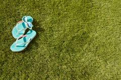 Misslyckanden i gräset Royaltyfri Fotografi