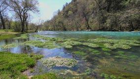 Missouri aktualna rzeka i spławowa roślinność przy dużą wiosną zbiory wideo