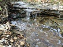 Missouri creekbed in Colombia, MO royalty-vrije stock foto
