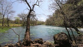 Missouri current river through trees at big spring stock footage