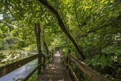 Missouri Ozarks. Walking trail in the Missouri Ozarks at Ha Ha Tonka state park royalty free stock image