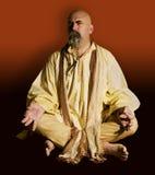 misstänksam guru Arkivbild