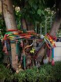 mistério da árvore Imagens de Stock Royalty Free