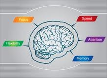 Mistérios do cérebro ilustração stock