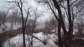Mist över den aktuella floden i parkerar, snö, blidvädret, vår arkivfilmer