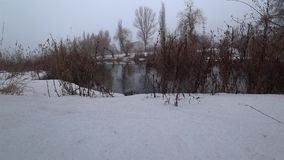 Mist över den aktuella floden i parkerar, snö, blidvädret, vår stock video