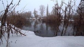 Mist över den aktuella floden i parkerar, snö, blidvädret, vår lager videofilmer