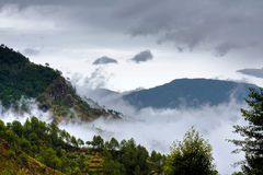The mist. Cloud covered forest, in the Philippines mountain province Stock Image
