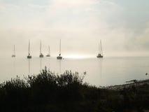 mist stock foto's