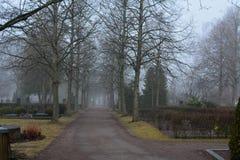 mist Royalty-vrije Stock Foto