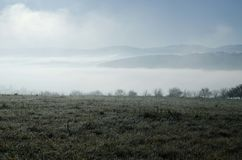 Mist Across Meadow on sunny morning Royalty Free Stock Photo