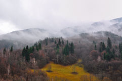 Mist around forest. Thick mist in a mountain panorama Royalty Free Stock Photo