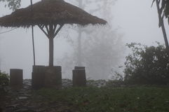 Mist. Awesome Image of Mist .This Picture was Taken from Sri Lankan Tea Estate Stock Images