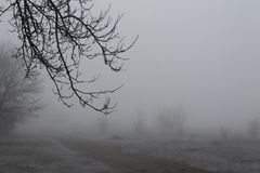 Mist. Beautiful, autumn, fog engulfed the whole village street and frighten residents Stock Images