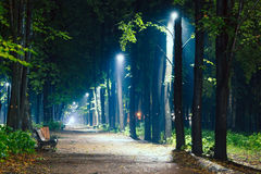 Mist, benches on pavement in light lantern at night Stock Images