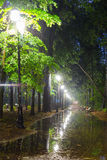 Mist, benches on pavement in light lantern at night Royalty Free Stock Photography