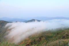 Mist bergen Arkivfoton