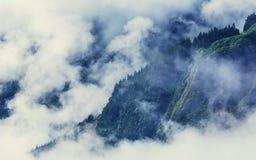 Mist in bergen Stock Afbeelding